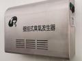 不锈钢壁挂式臭氧发生器